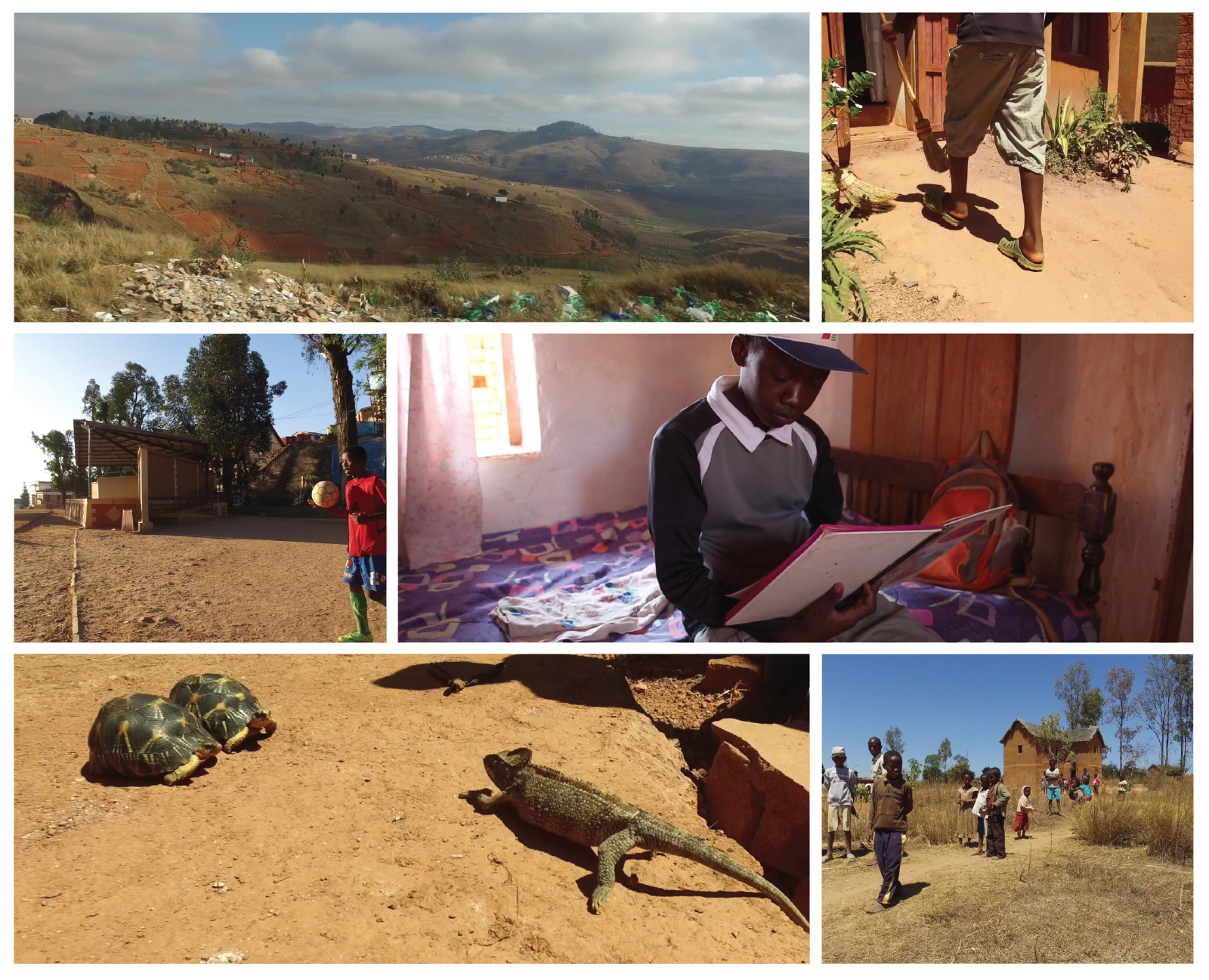 madagascar-pictures.png